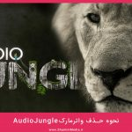 audiojungle